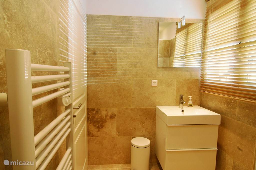Bathroom with sink shower and separate toilet