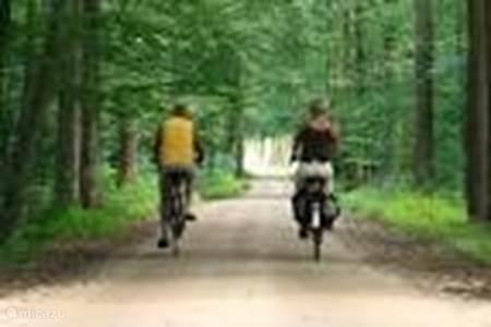 Fietsen in Winterswijk en omgeving