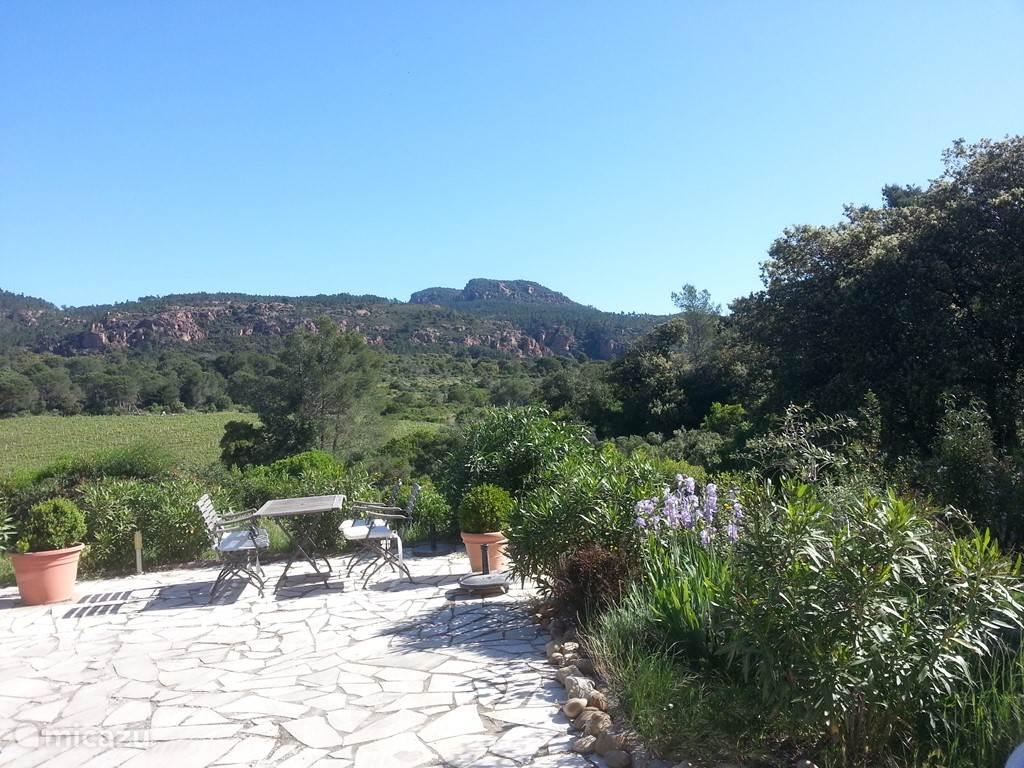 Wijnvelden en natuur
