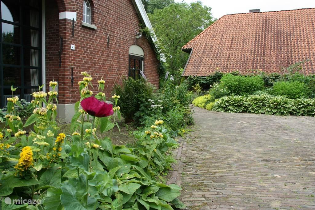 Gebouwen en tuin
