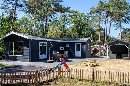 Vakantiehuis Nederland, Gelderland, Beekbergen - chalet Ons plekje in het bos op de Veluwe