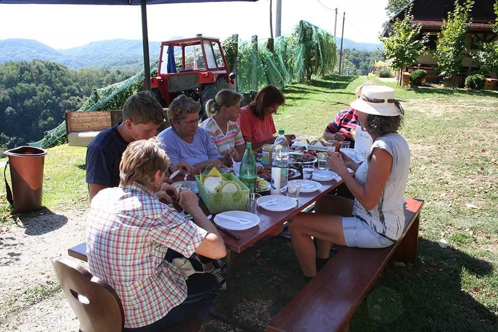 Lunch tijdens de druivenoogst