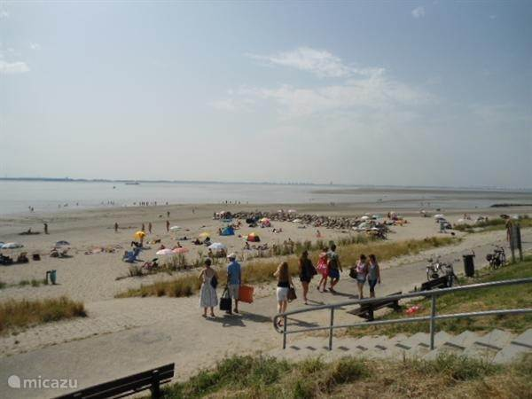 Heerlijke strand op 100 meter!