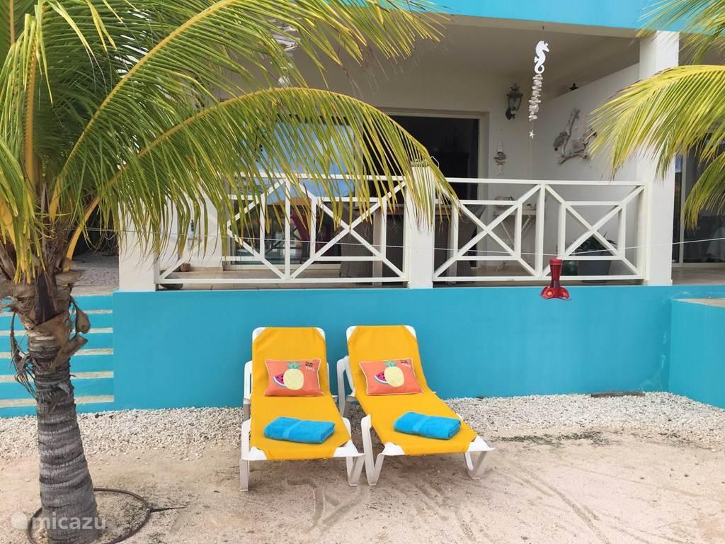 Zwischen den Palmen auf der Terrasse am Wasser.
