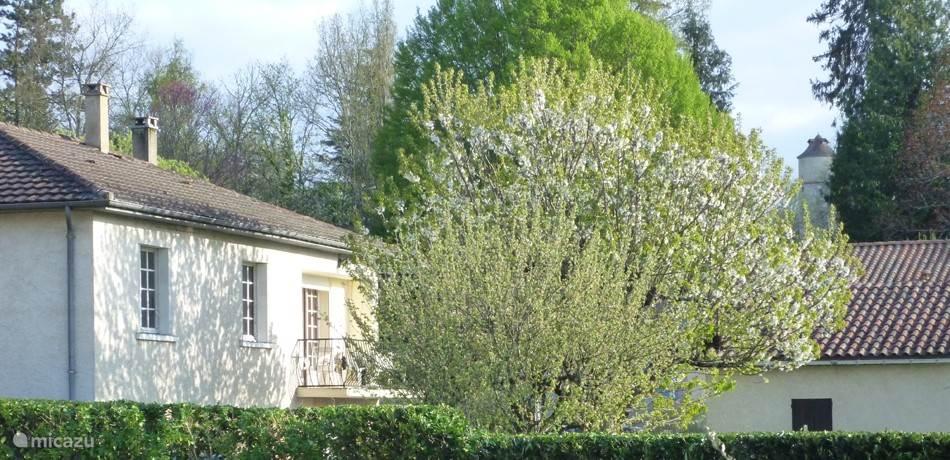 Vakantiehuis Frankrijk, Dordogne, Le Bugue vakantiehuis Truffière