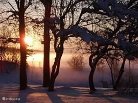 Zonsopgang in de winter over de tuin.