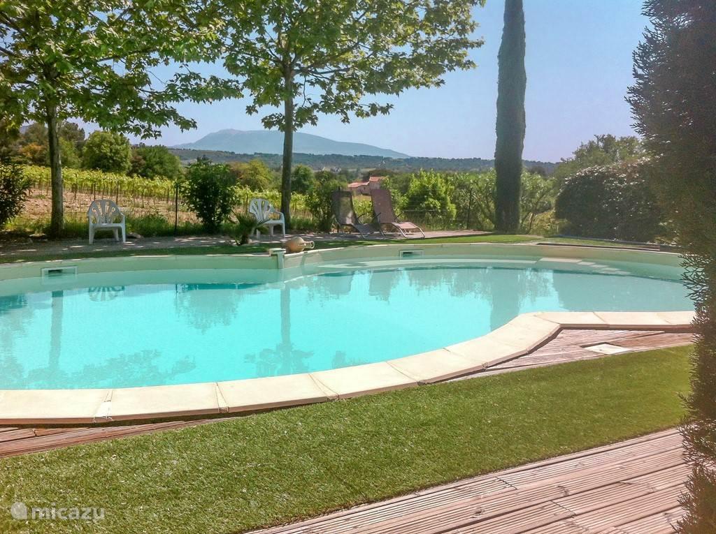 Het zwembad met houten terras en zicht op de wijngaarden en de Mont Ventoux.