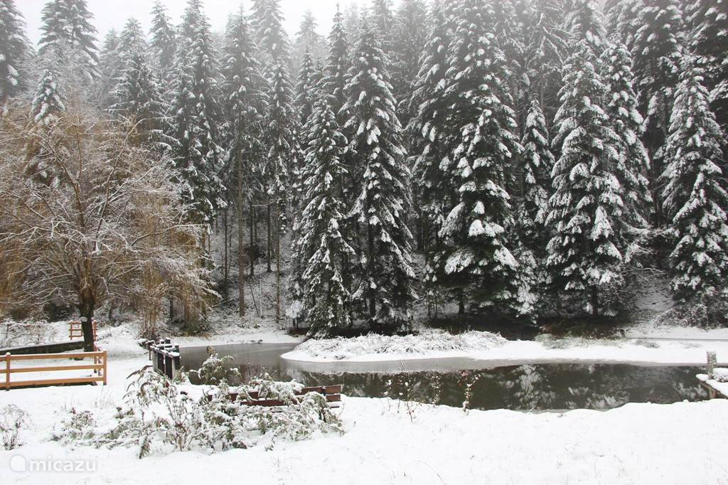 Part of the lake in winter