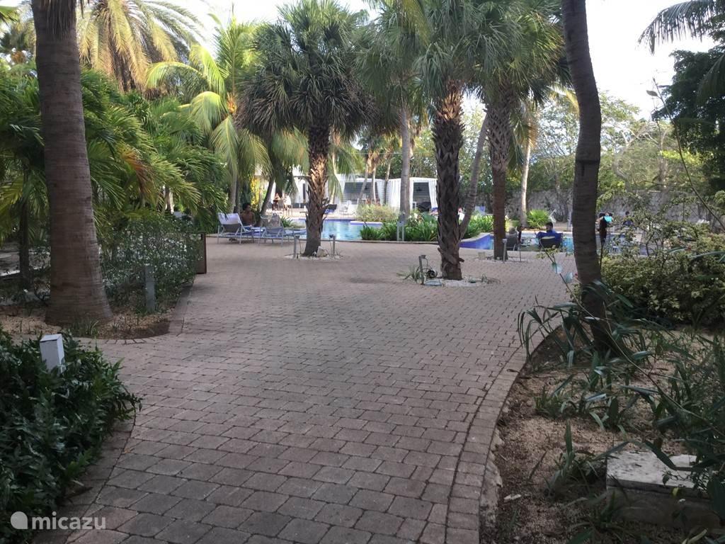Dit is het zwembad van het Floris suite Hotel. Dit hotel ligt direct bij ons resort.
