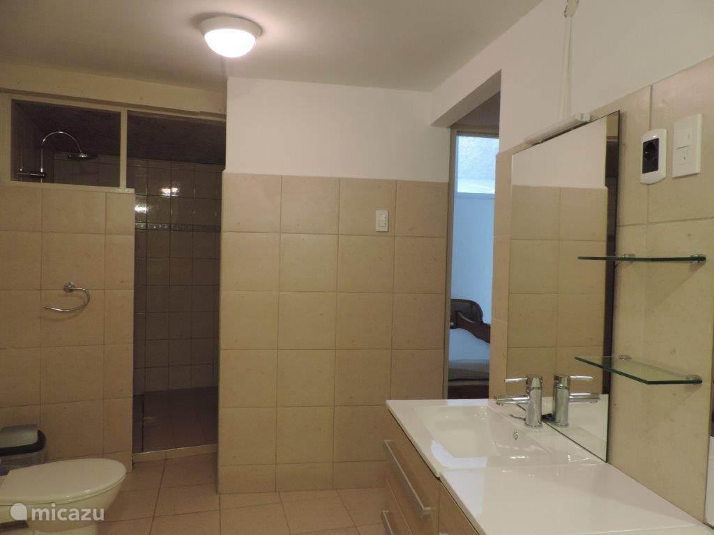 dxe badkamer voor de hoofdslaapkamer