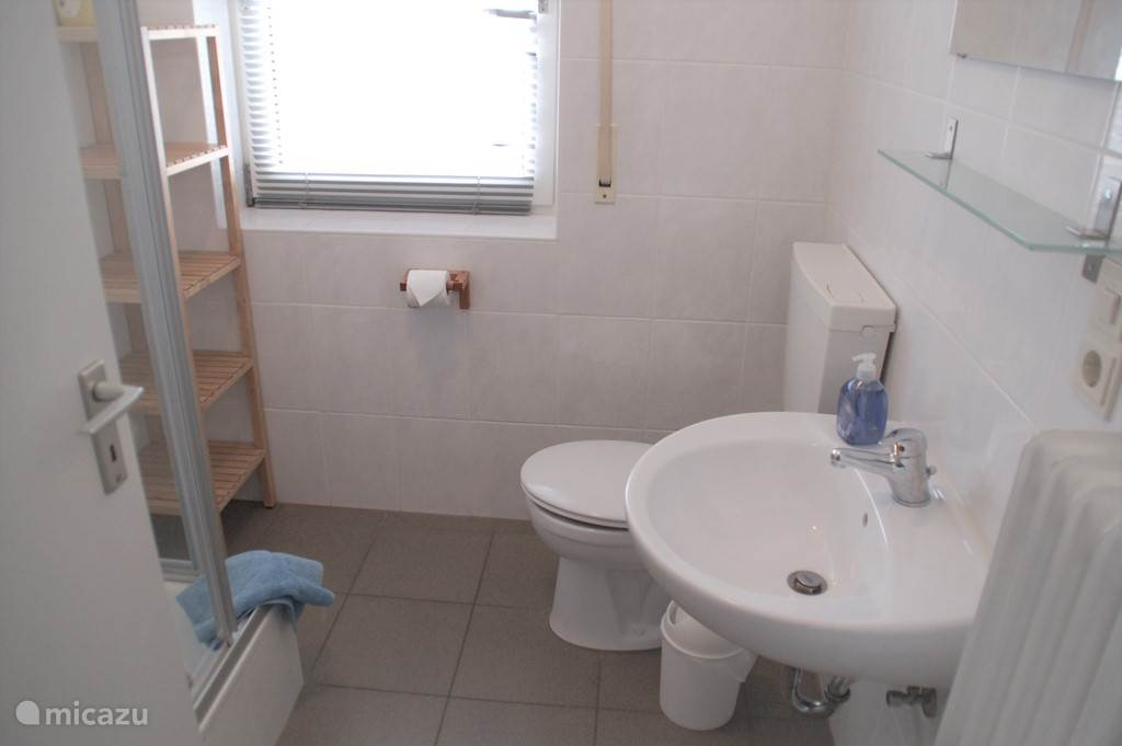 Bathroom with shower, toilet, sink and small closet