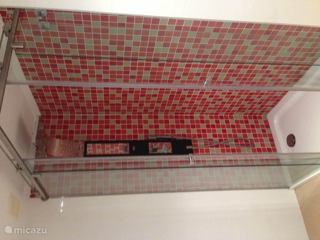 tweede badkamer ook voorzien van stortdouche