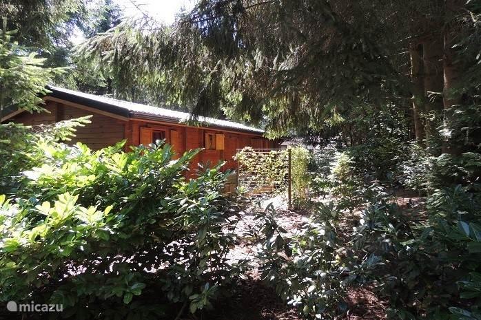 Woodgalow BP 142 met Sauna