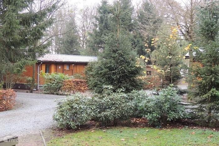 Woodgalow op het Bospark