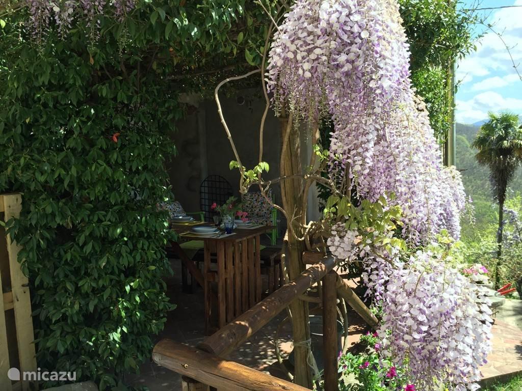 tuin met uitzicht