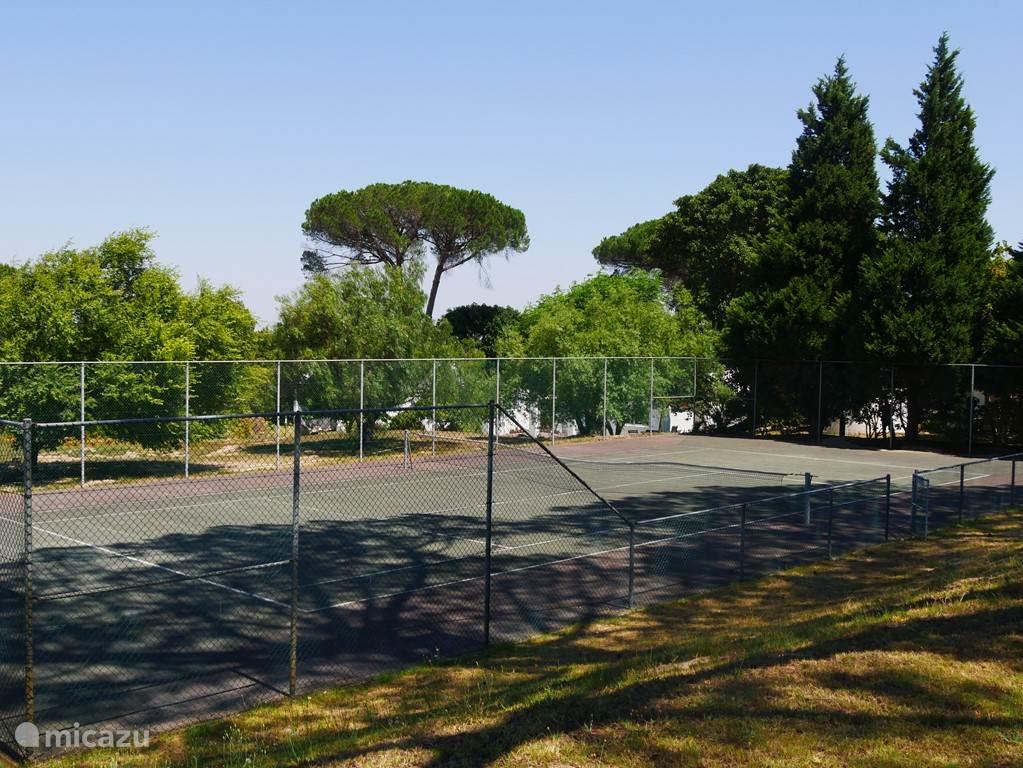 De gemeenschappelijke tennisbaan