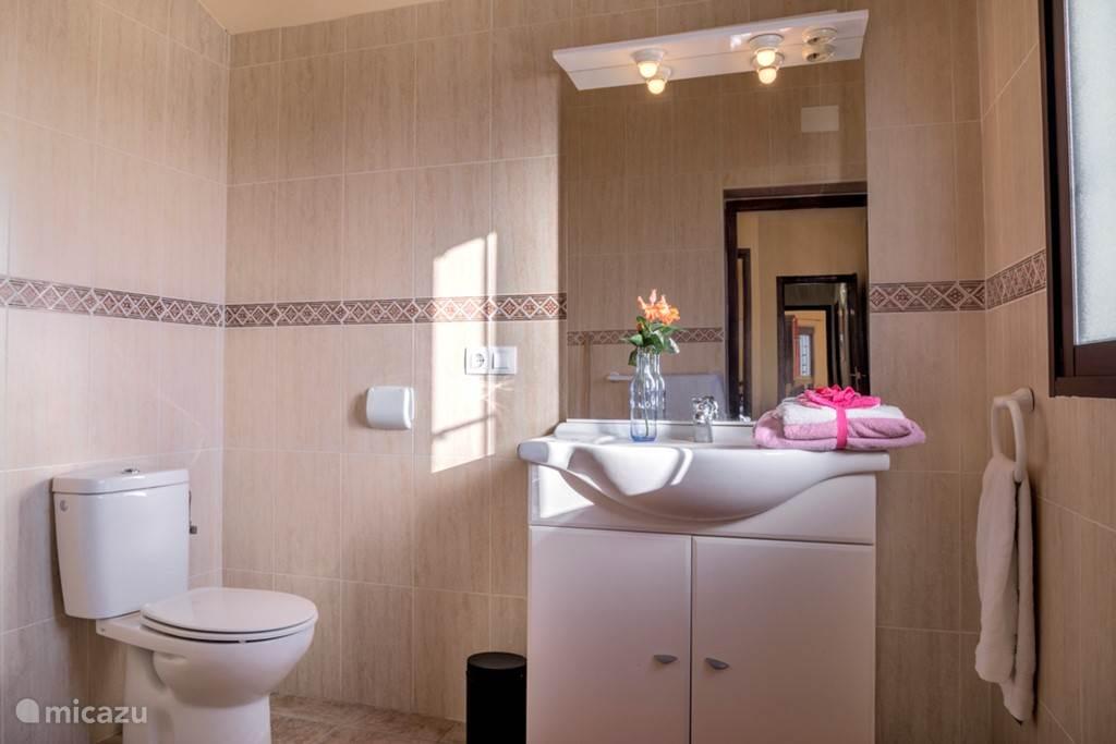 De en suite badkamer met douche en wc en wastafel.