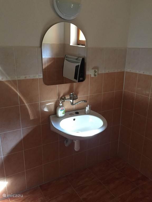 Badkamer beneden, douche en wastafel