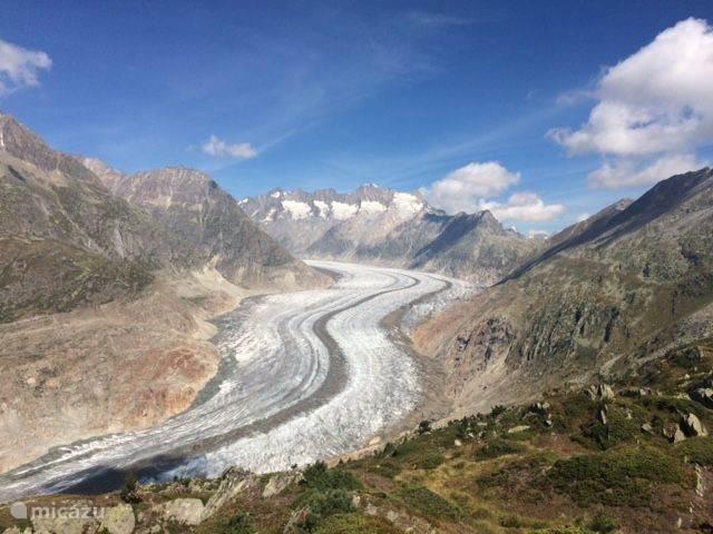 De Aletsch Gletscher