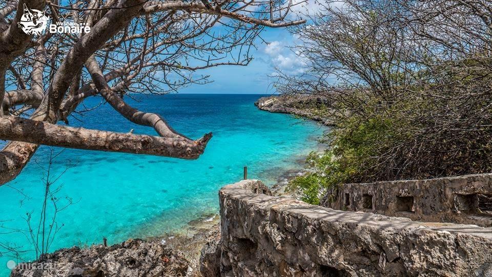 1000 steps Bonaire