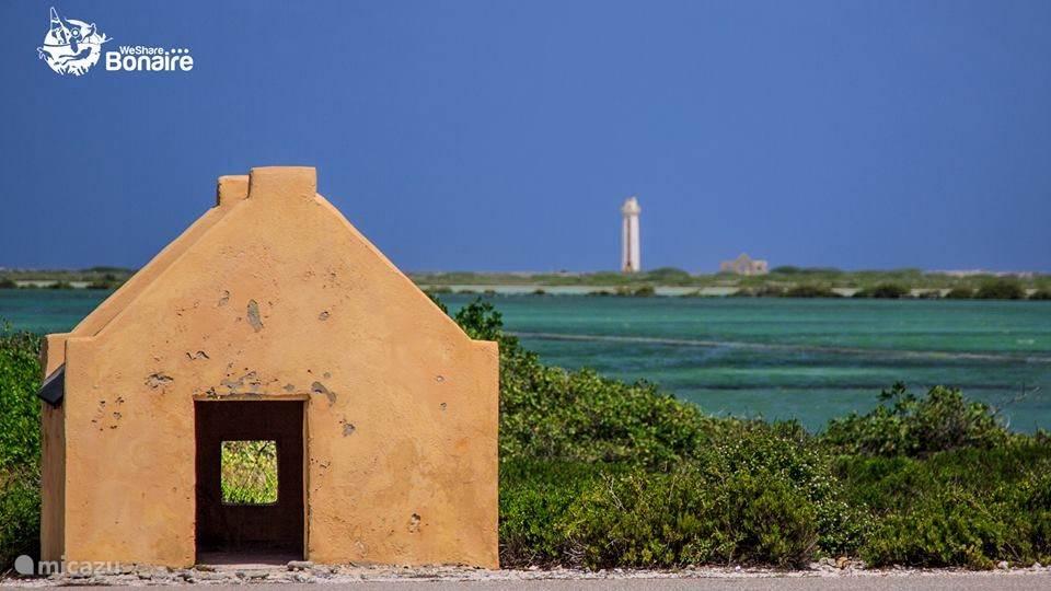 Vroegere slavenhuisjes bij Red Slave met op de achtergrond Willemstoren Lighthouse