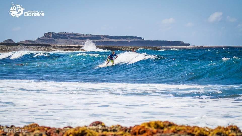Wellen an der Playa Grandi Bonaire