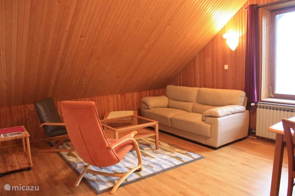 Living room attic apartment