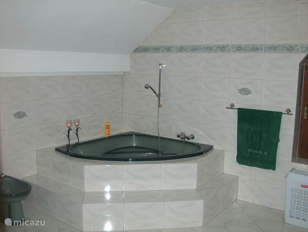 De grote badkamer op de eerste verdieping, voorzien van een bad, douche, toilet, bidet, wastafel, babybadje en wasdroger.