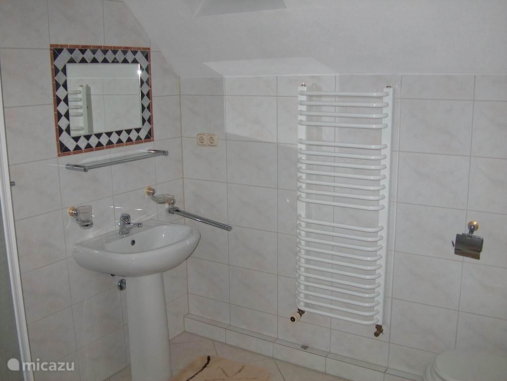 De kleine badkamer op de eerste verdieping, voorzien van douche, wastafel, toilet en bidet.