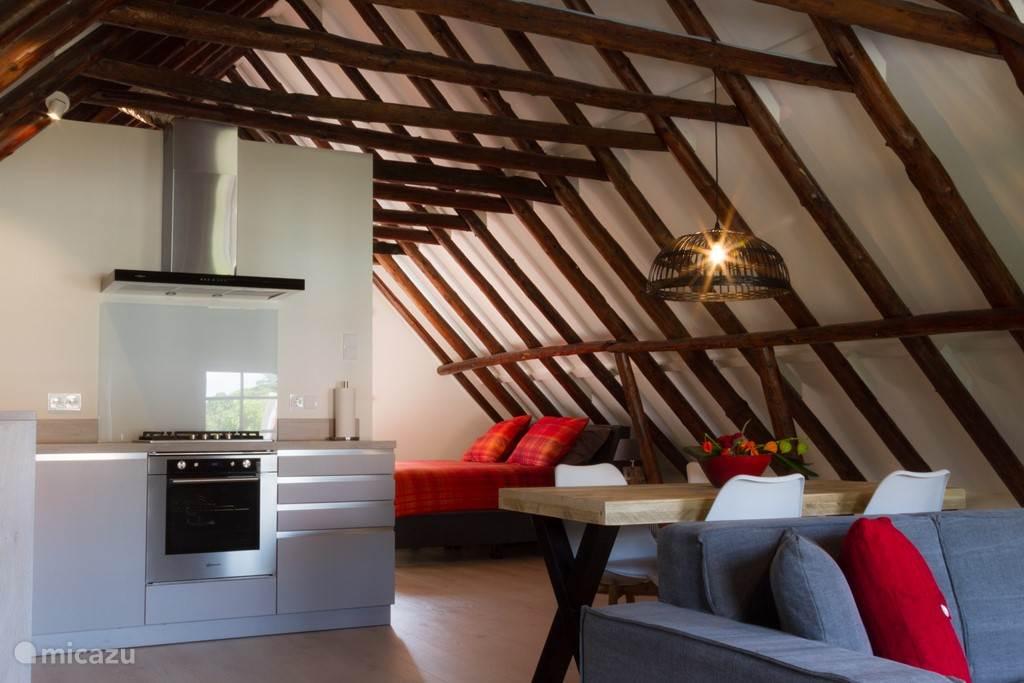 Vakantiehuis Nederland, Groningen, Bad Nieuweschans - appartement Appartement Bad Nieuweschans