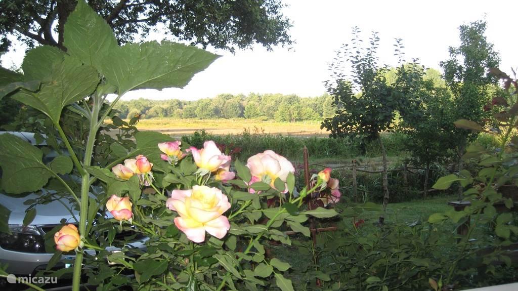 Het uitzicht vanuit de tuin