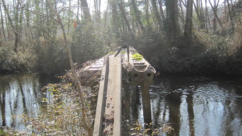 Een van de vele bruggetjes over de courant naar Contis