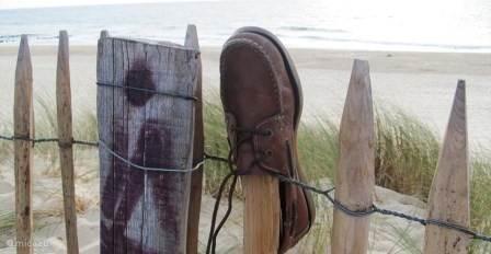 Altijd wat te zien op het strand