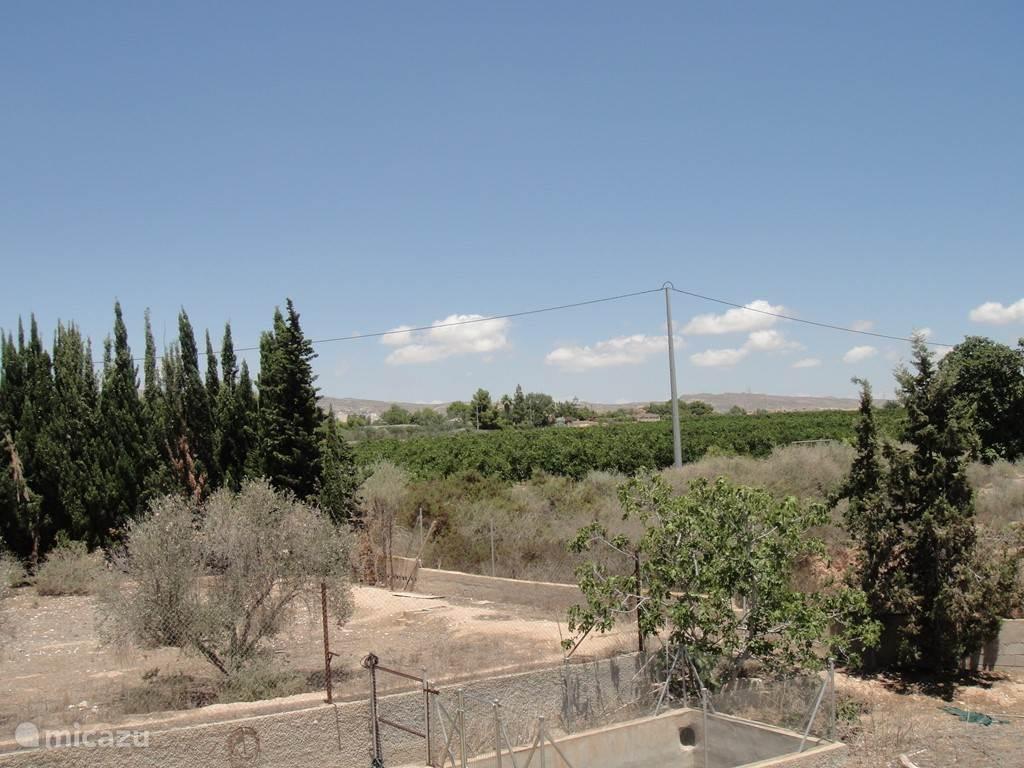 Zicht op de zijkant en de buren een sinasappelboomgaard