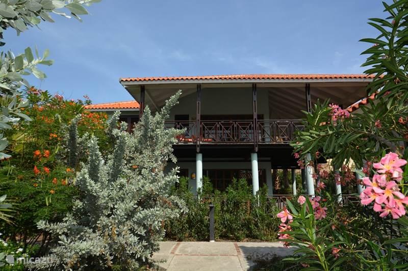 Vakantiehuis Curaçao, Curacao-Midden, Blue Bay Villa Villa direct aan strand Blue Bay