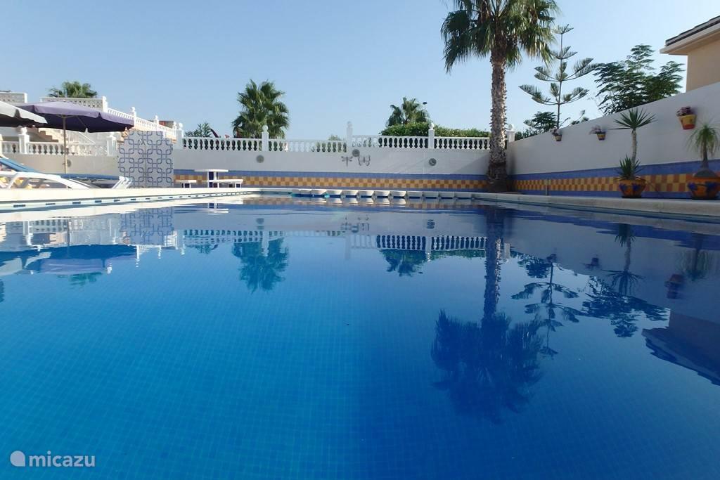 Groot privé zwembad met kindergedeelte (60cm diep) en rondom groot buitenterras.