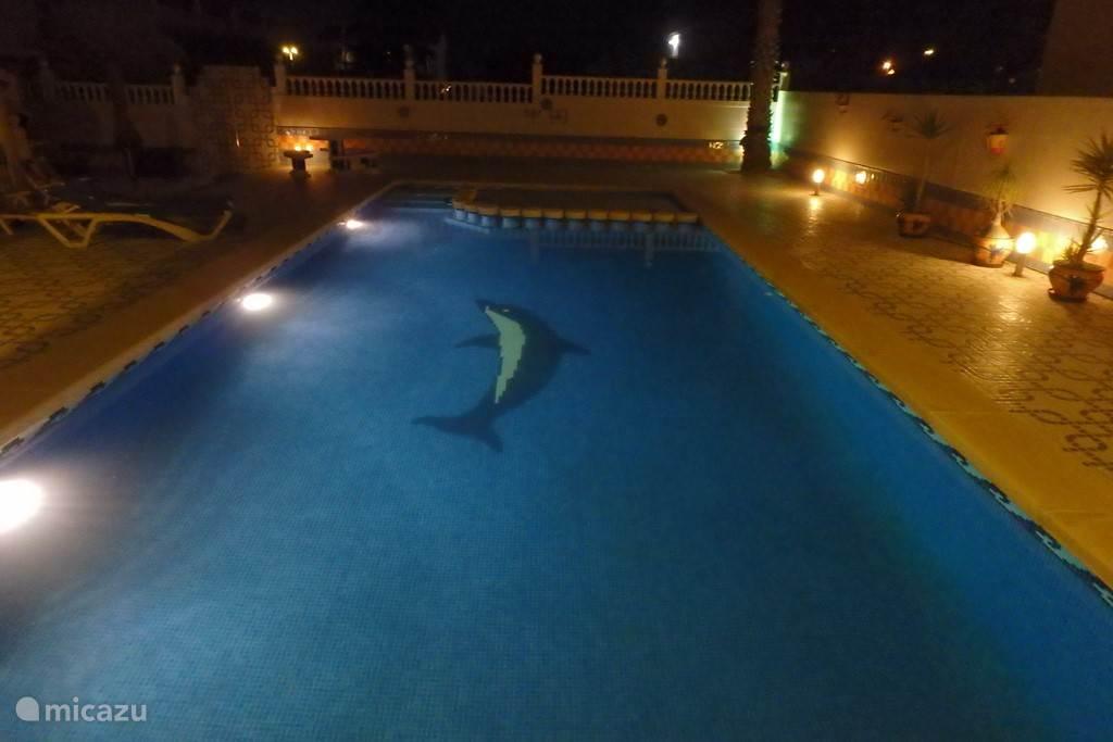 Verlicht zwembad en terras.