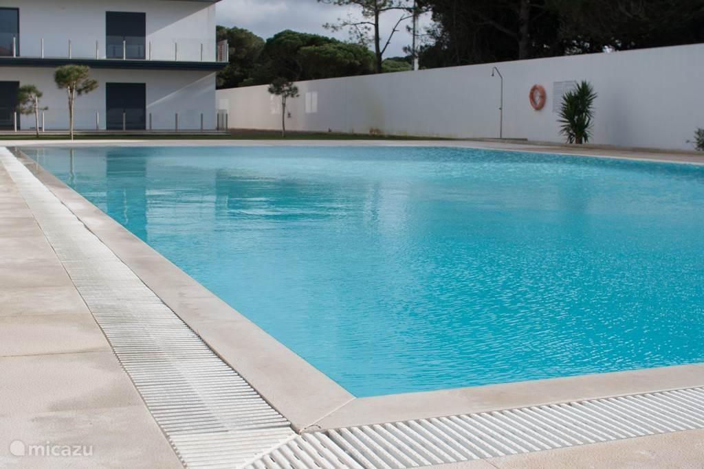 Het grootste zwembad van het dorp!