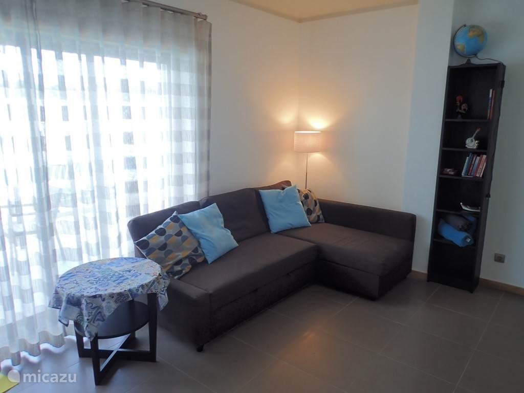 De leefruimte met sofa-bed, televisie met bluray speler, en kleine bibliotheek