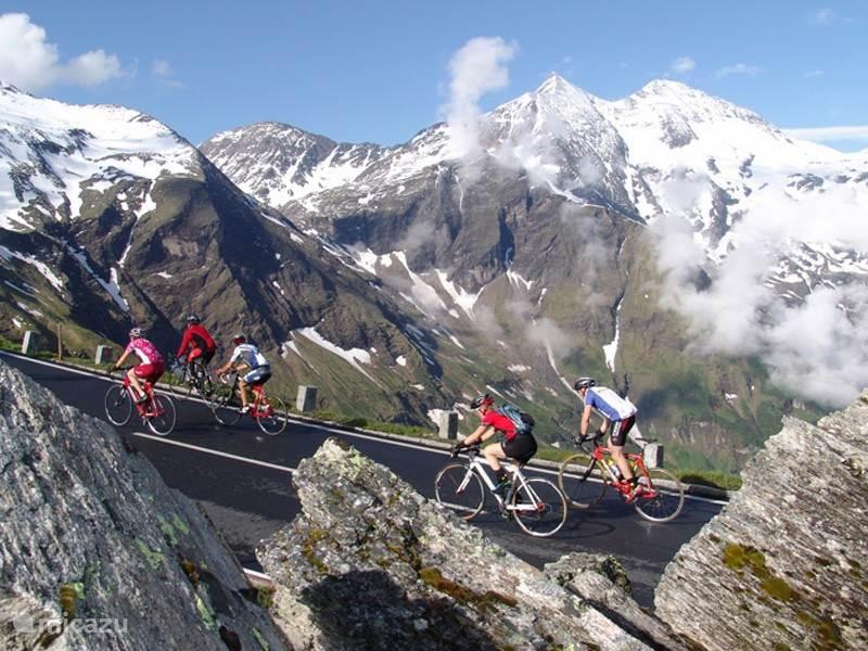 The 4 Seasons joy of Kaprun / Zell am See: Cycling