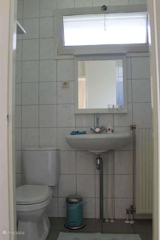 Badkamer met douche, wastafel en toilet.