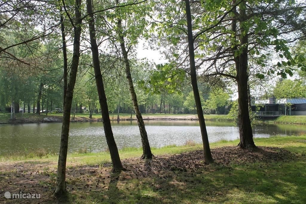 De vijver op het park.