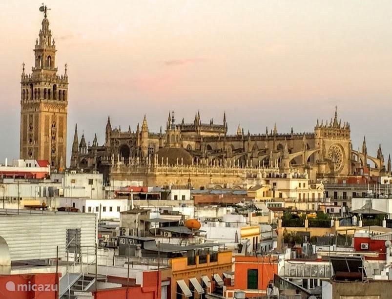 De indrukwekkende kathedraal met de mooie Giralda toren
