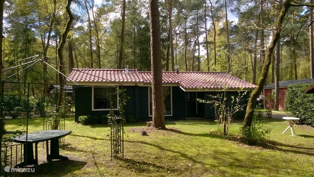 Vakantiehuis Nederland, Gelderland, Laag Soeren vakantiehuis Wintergroen