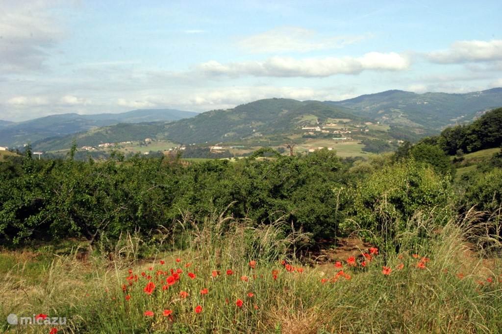 Heuvels rond Désaignes