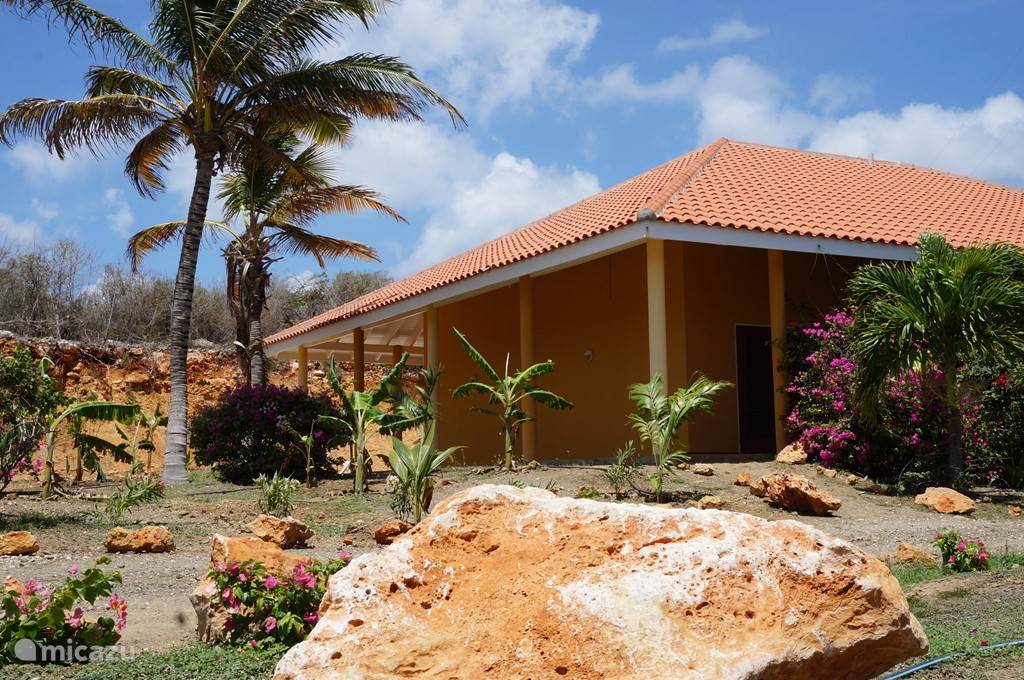 Windsurfen, Curacao, Banda Abou (west), Grote Berg, appartement Holiday & Dreams