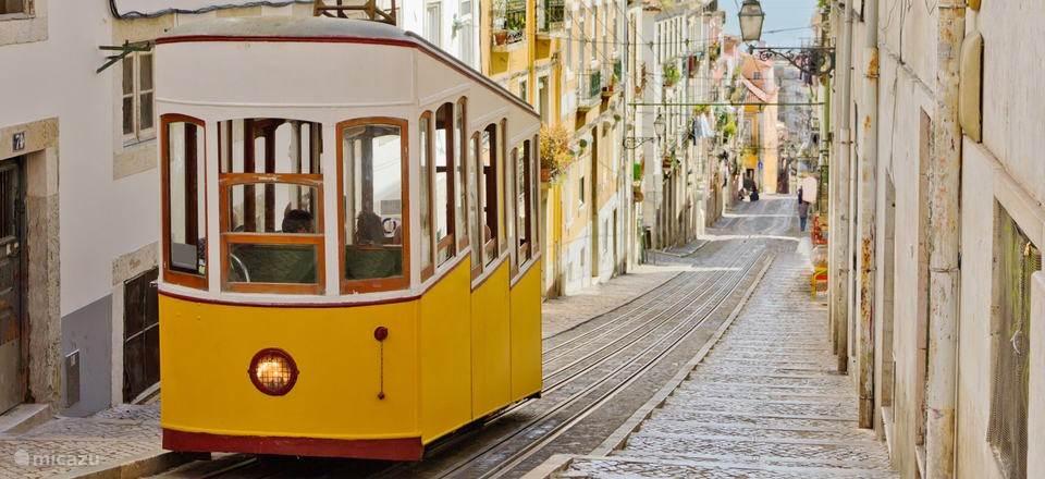 Lissabon makkelijk te bereiken voor een heerlijke dag cultuur en ontspanning. +/- 40 min. rijden van huisje