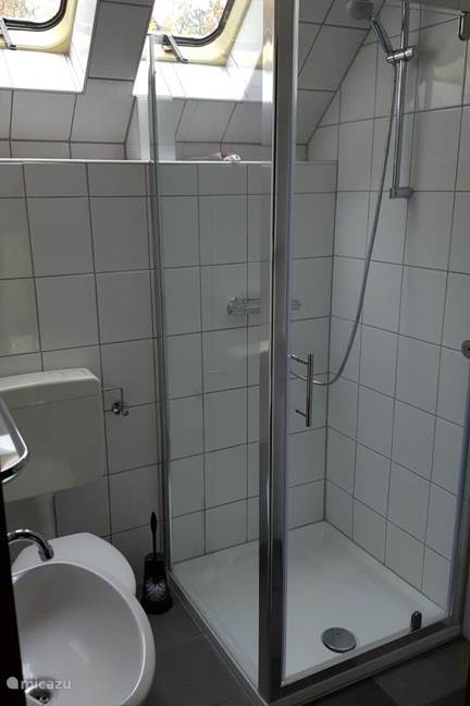 Modernized bathroom with shower, toilet and sink.