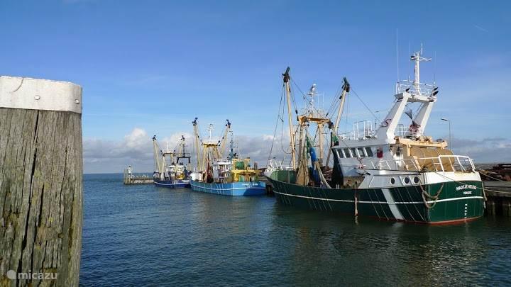 de haven in het vissers plaatsje Colijnsplaat