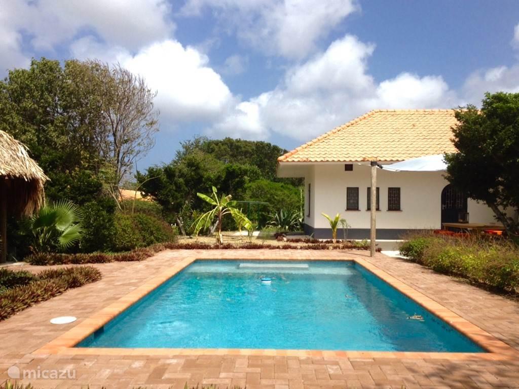 Lekker zonnen vanaf een van de zonnebedjes naast het privé zwembad van 32 m2!